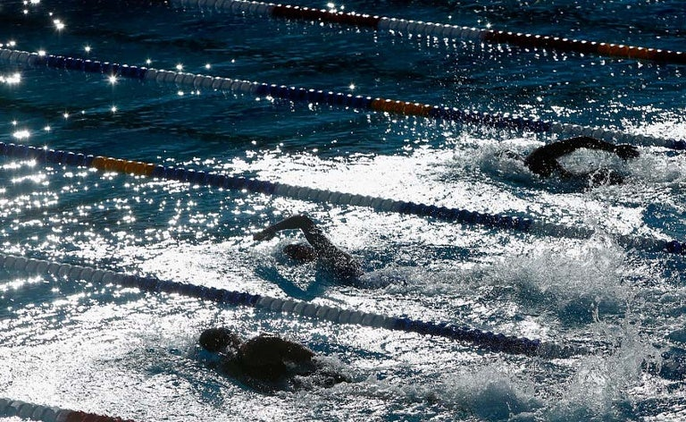 Swimmers at Stanford Avery Aquatic Center